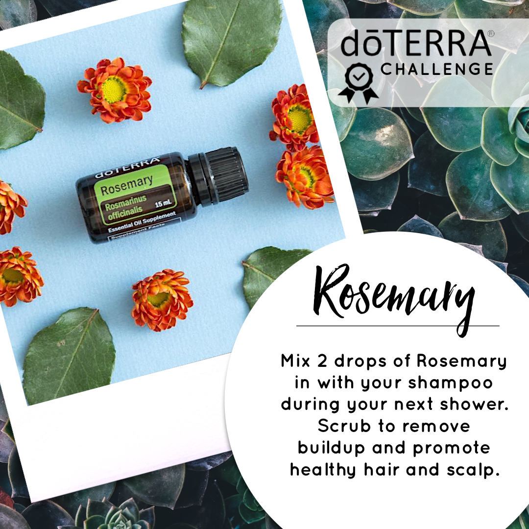 Treasured Essential Oils Rosemary